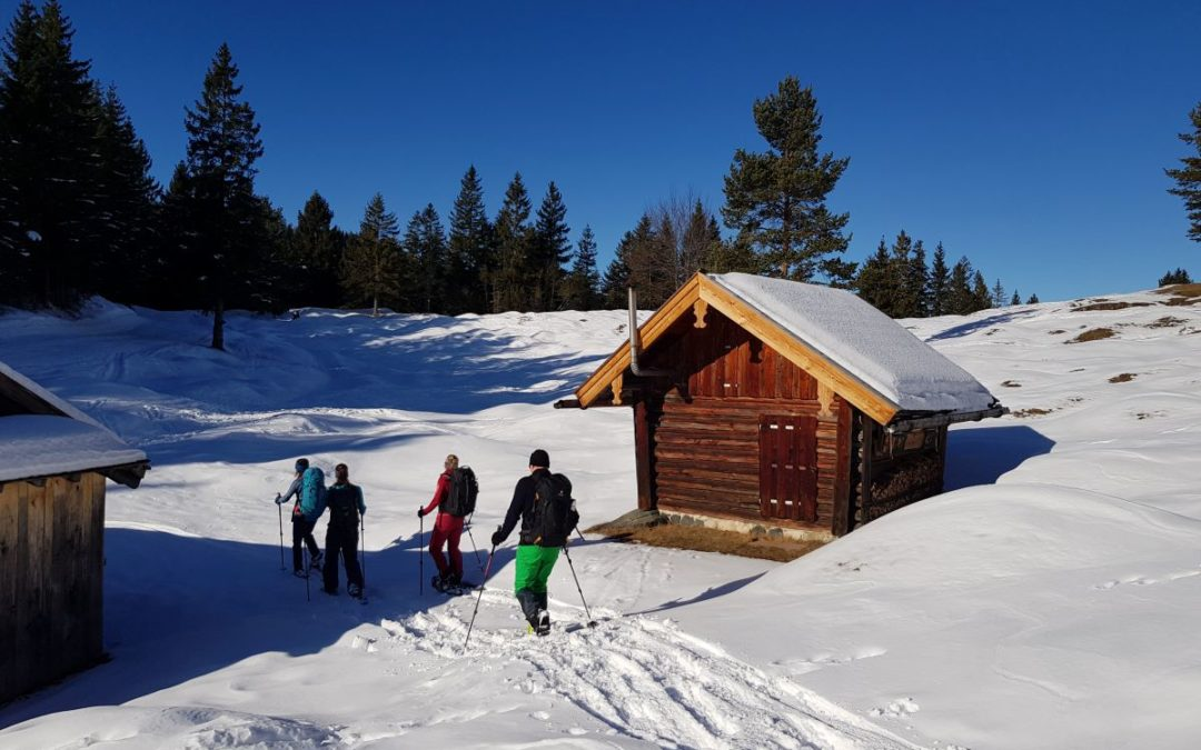VDBS – BWF – Ausbildung Winter